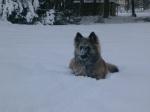 mulle lumi meeldib