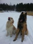Pääru ja Lotte