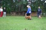Foxi ja Regina